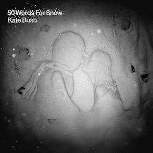 AlbumCover50WordsforSnow
